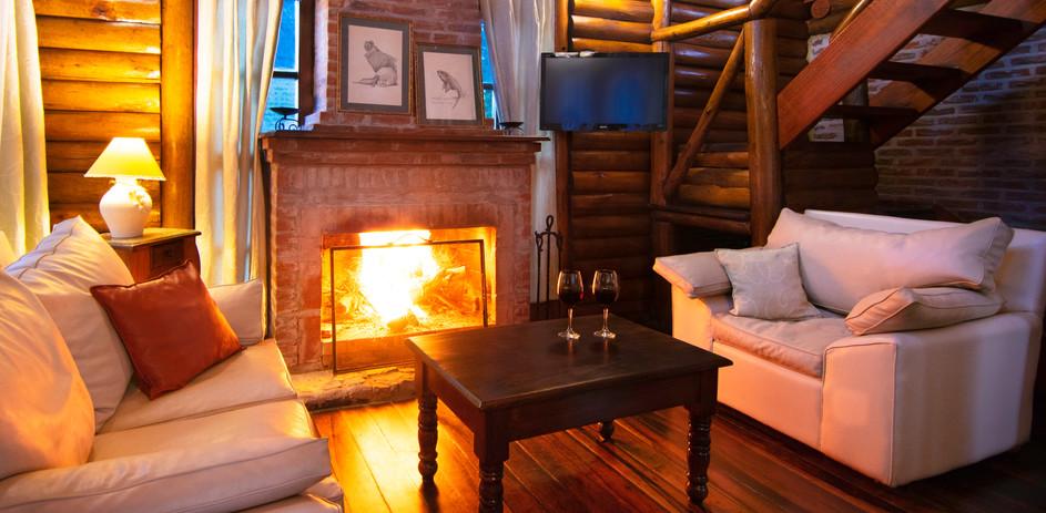 Cabaña 101. Living + hogar a leños.jpg