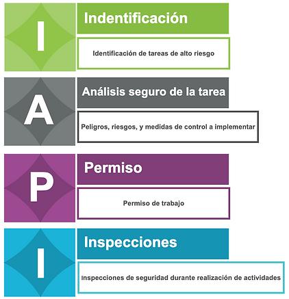 IAPI.png