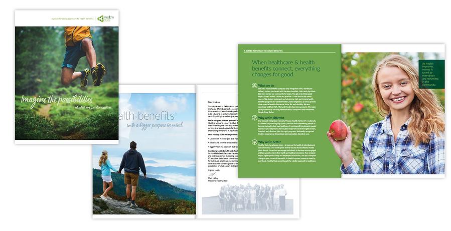 Healthy State Brochure