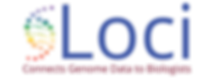 Loci Logo w Color Rainbow Gradient-04.pn