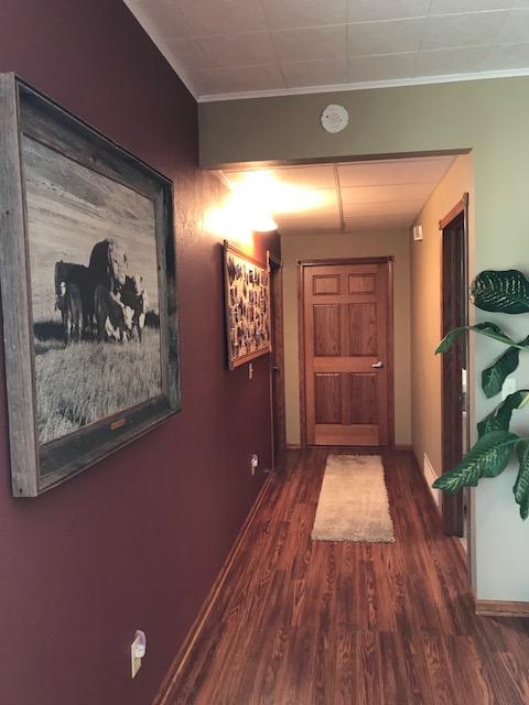 lower level hallway - Copy