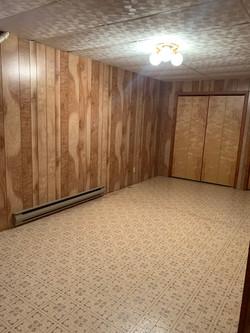lving room basement