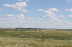View of Lacreek Natl Refuge Prairie Dog