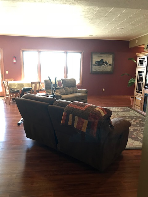 lower level family room - Copy