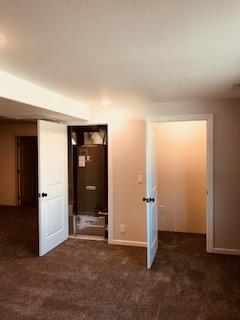 utlitity and extra closet in den