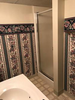 basement apt bathroom (2)