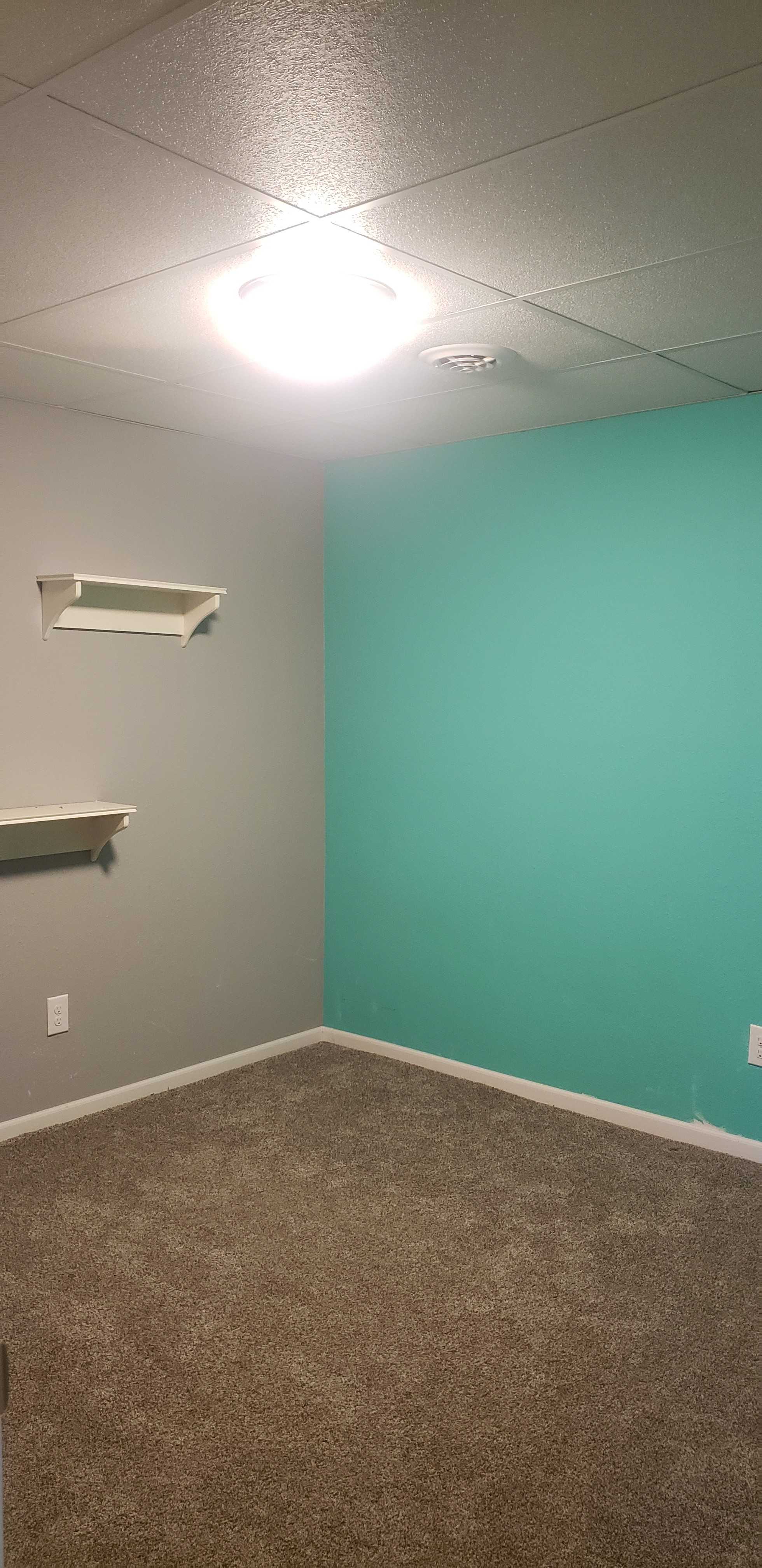 Basement Bedroom NC
