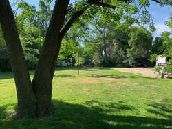 Back Yard (3)