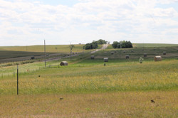 View to west from pasture.