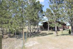 Yard on west side of cabin