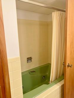 downstairs bath (3)