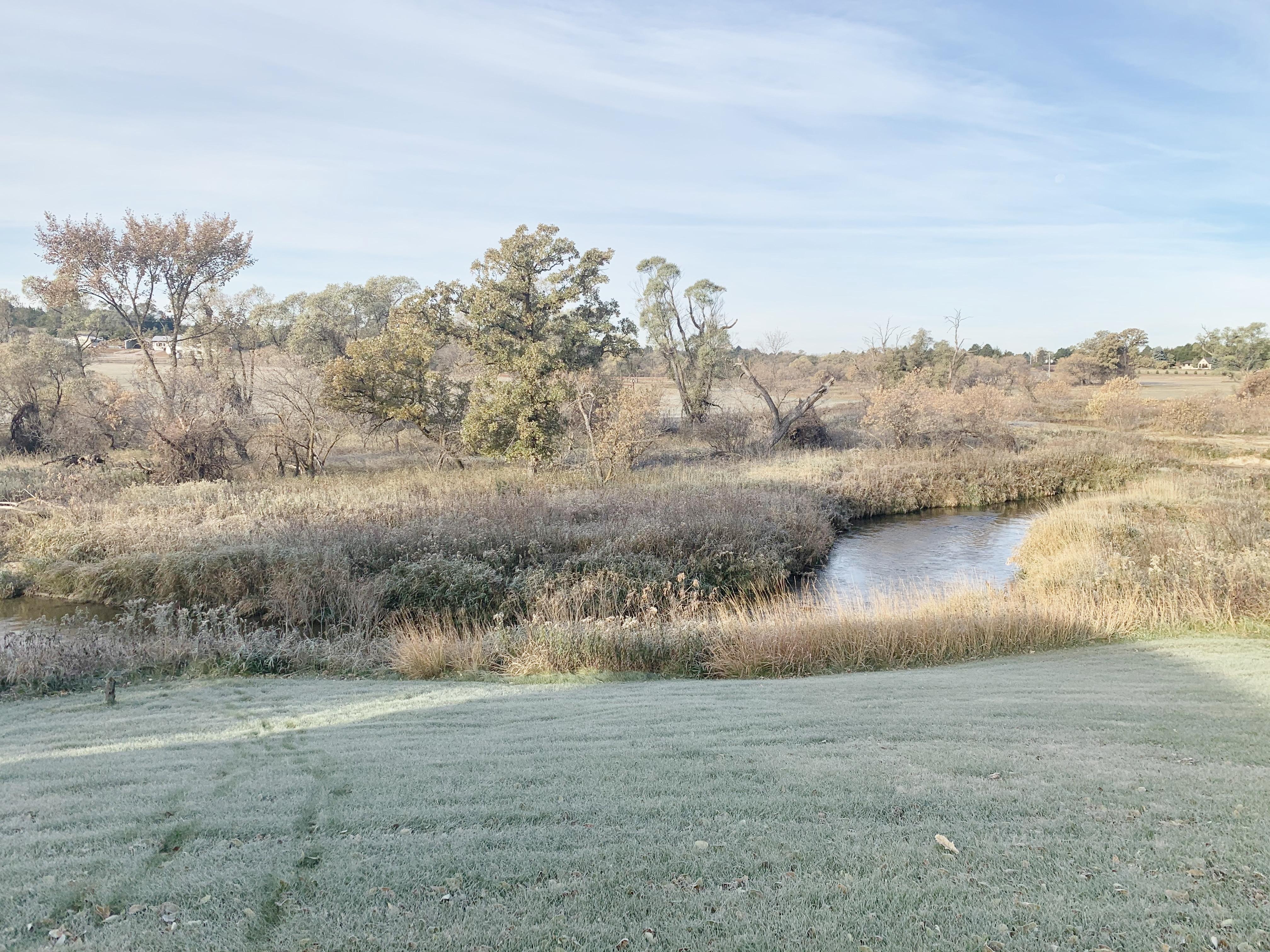 Minn Creek