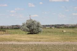 SE view of Lacreek  Refuge