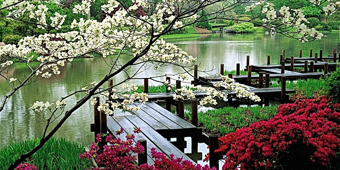 japanese_garden-Natural_landscape_widesc