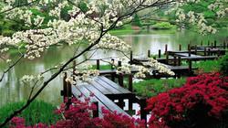japanese_garden-Natural_landscape_widesc