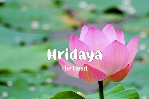 HRIDAYA: Sanskrit for Heart