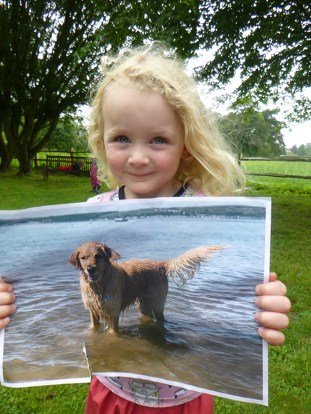 Week commencing 21st June @ Westmeston - Pets, Pets and more Pets!