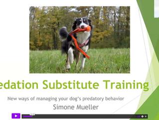 Une autre approche du travail sur la prédation du chien