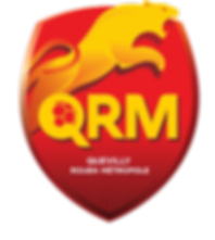 logo QRM PNG.png