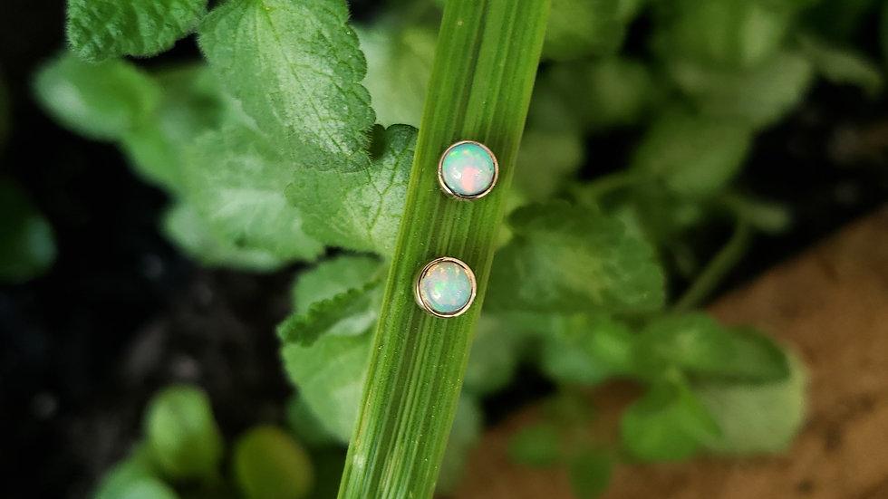 14k Ethiopian Opal Studs (Rose Gold)