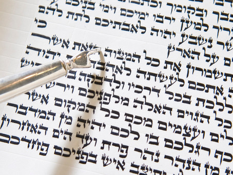 This Week's Torah Reading