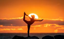 Yoga - Sushma