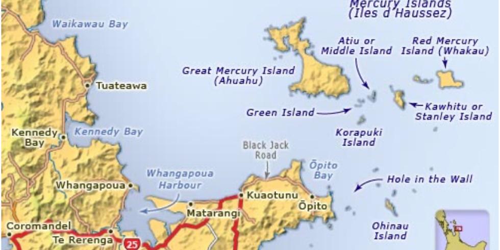 Come camp and spear in Kuaotunu!