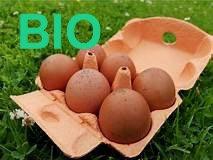 Oeuf de Noirans  BIO  X 6 ( poule pleine air)