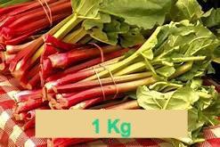 Rhubarbe  1 Kg
