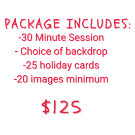 HOLIDAY GRAPHICS-7.png
