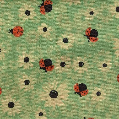 #018 - Ladybugs