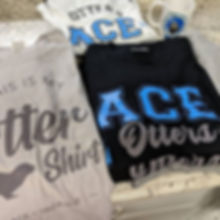 Recent fundraiser for ACE. Looking to fu