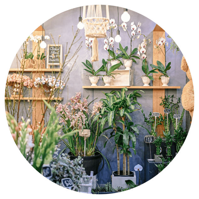 Roseland Florist