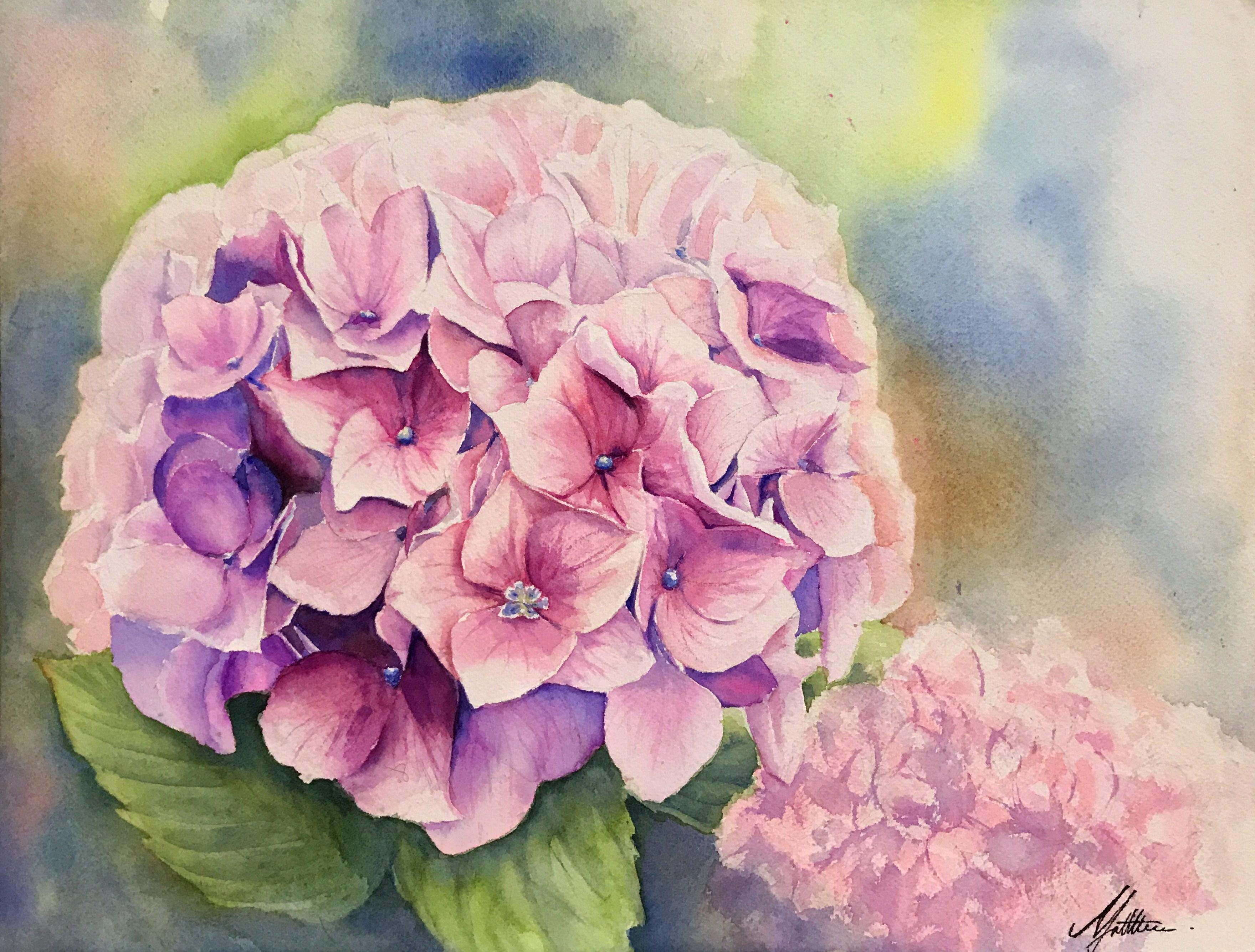 < Flower of Life>