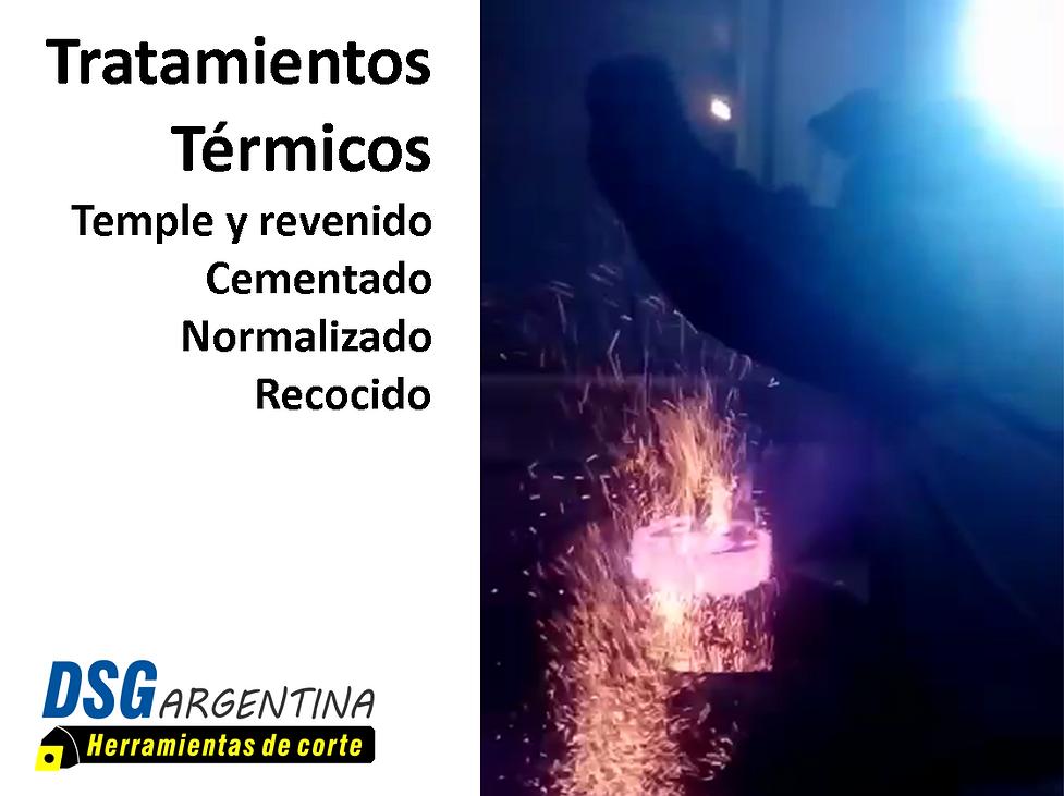 Tratamientos termicos DSG Argentina.png