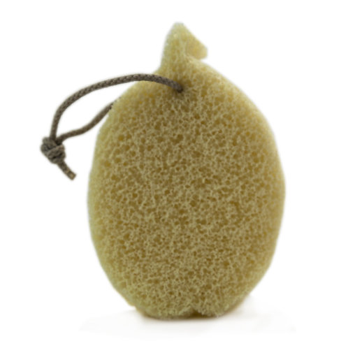 Eponge Xpand délicat enrichie à l'huile d'olive pour le corps forme et couleurs naturelles