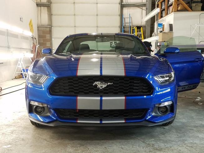 MustangStripes.jpg