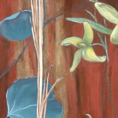 Eucalyptus and Forthysia