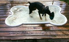 Water. Frisbee. Love.