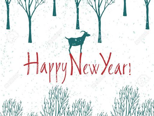 Wir wünschen ein frohes neues Jahr 2019!