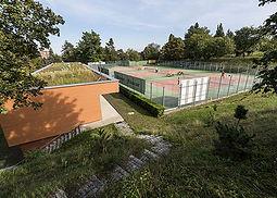tenis_kotlarka.jpg