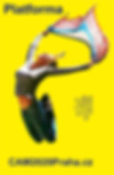 logo_CZ.jpg