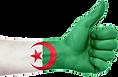algeria-643757_1280_edited.png
