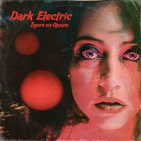 TOO_Dark_Electric_Single_Cover.jpg