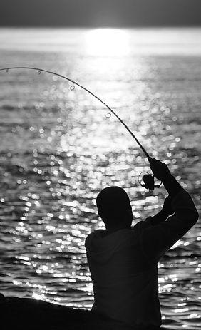 Fisher7sw.jpg