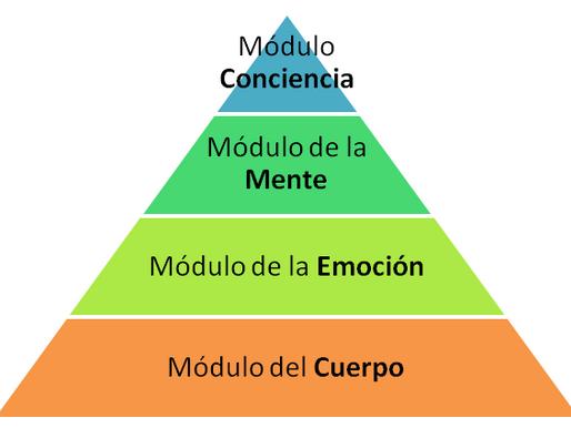 Las 4 Áreas o Sistemas que determinan lo que haces