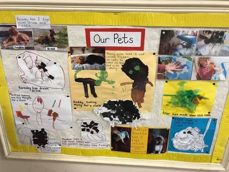 Pets, Portraits and Fungus!