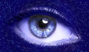 Bleu Roi : Visualisations