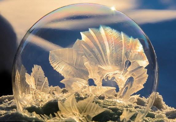 Bulle et cristaux de glace