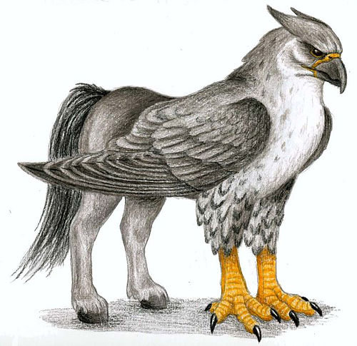 Hippogriff Feather
